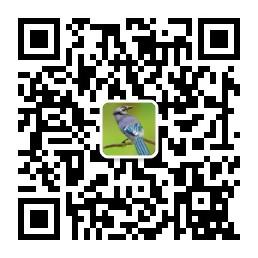 gh_f0fe8e830402.jpg